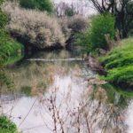 riverleam