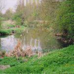 riverleam2