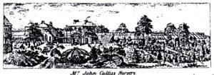 John Cullis' Nursery