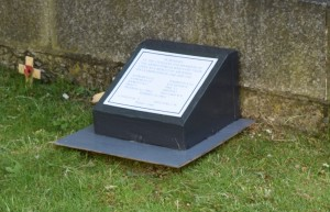 Model of Plaque photographed in situ © Barry Franklin